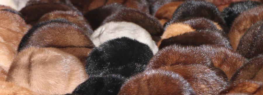 Achat d 39 une fourrure retour d 39 exp rience sur ce v tement - Retour de couche quand reprendre la pilule ...